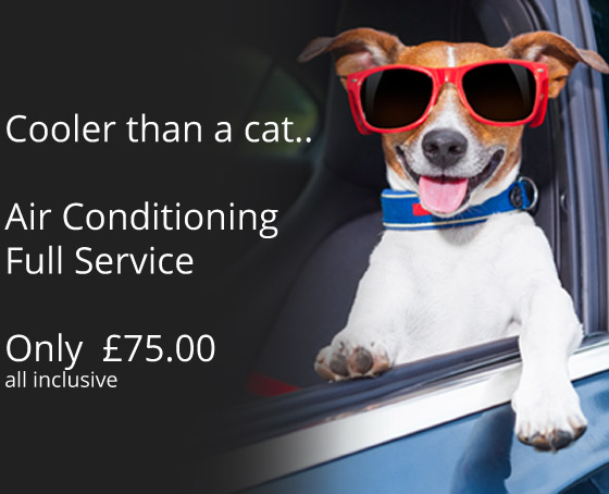 Haydon Tyres Special Offer - Cooler than a cat... Air Conditioning Full Service only £50